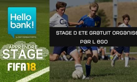 L'EGO organise un stage d'été dédié à FIFA
