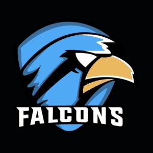 Toxic Falcons eSport