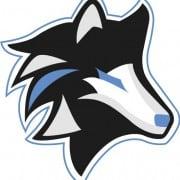 Logo IceWolves Esports