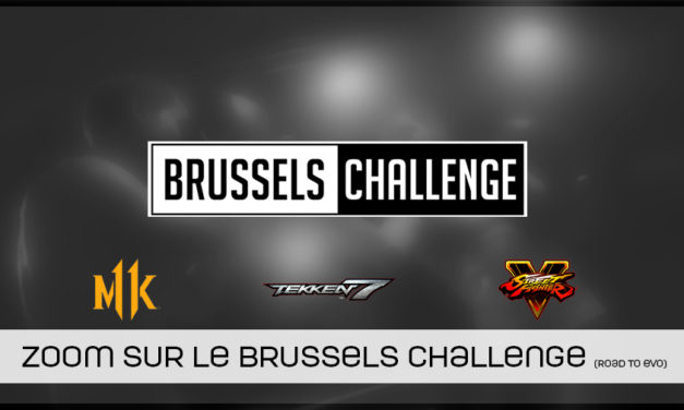 Zoom sur le Brussels Challenge road to EVO 2019